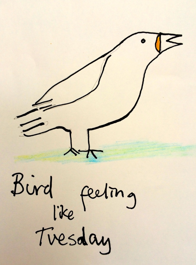 Bird feeling tuesday